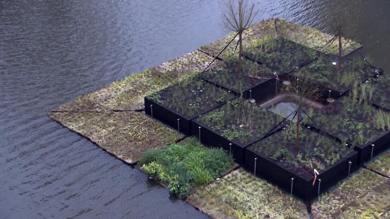 Drijvend park moet oude rotterdamse haven vergroenen nos for De tuinen rotterdam