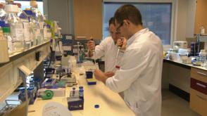 Big data gebruikt om sterfte aan bloedvergiftiging terug te dringen