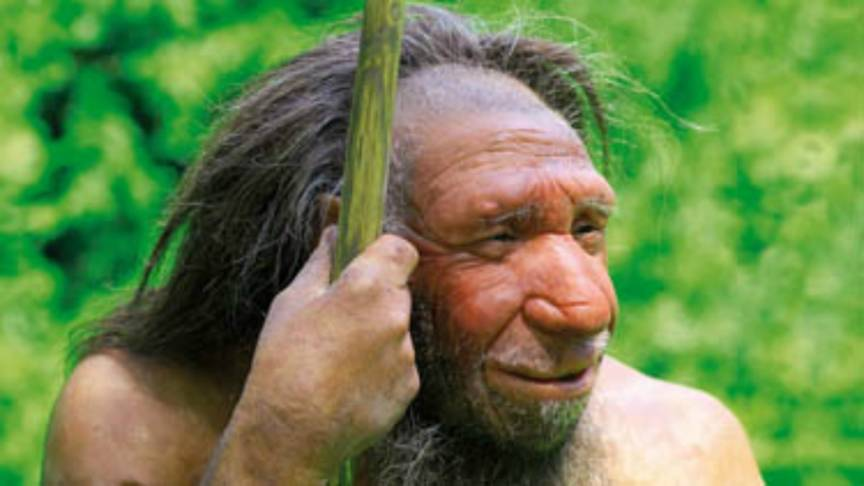 ... in het Neanderthaler Museum in het Duitse Mettman www.neanderthal.de Neanderthal 1