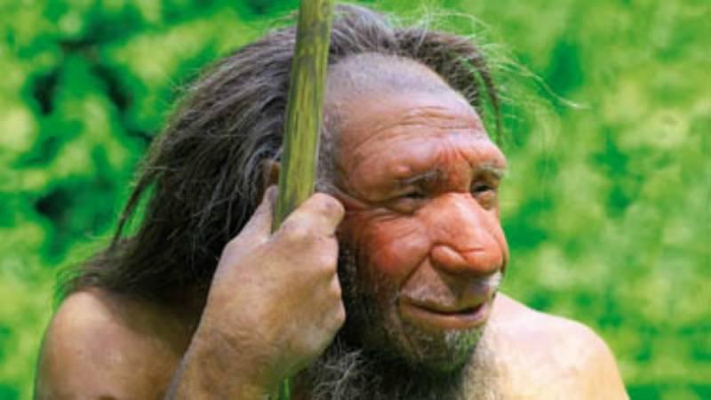Rookverslaafd? Depressief? Geef de neanderthalers de ...