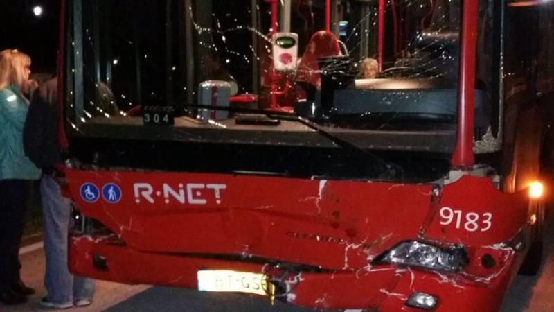Pony's circus Renz dood na aanrijding met lijnbus.