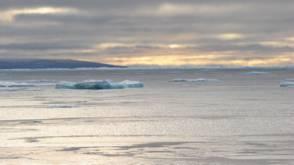 Bekijk details van Klimaatverandering maakt ijzige cruise mogelijk