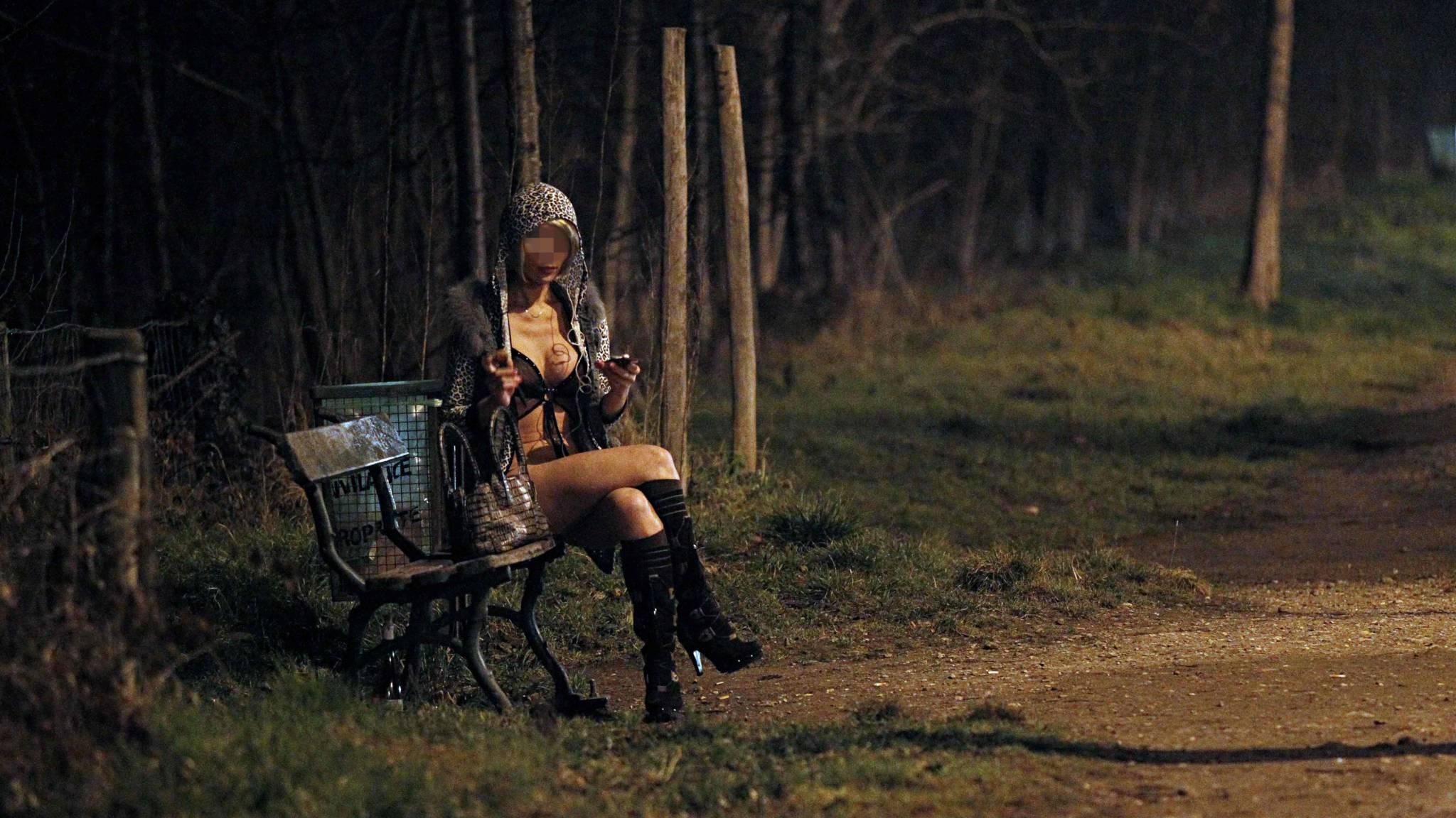 нашему ресурсу, булонский лес ночью фото компенсирует усилие