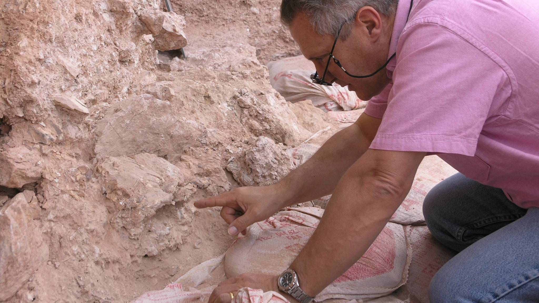 Technieken voor het dateren van fossielen