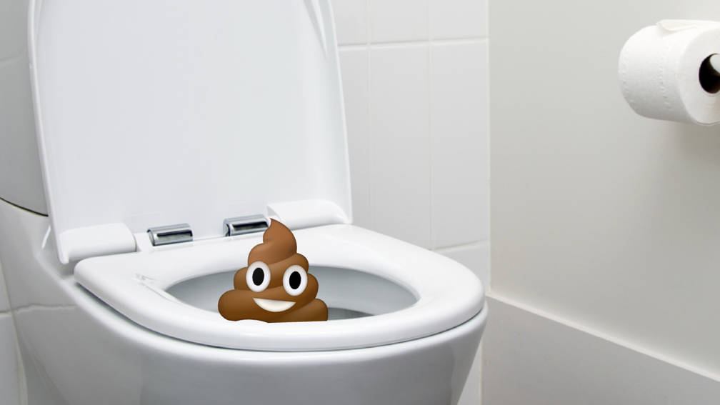 Afbeeldingsresultaat voor drollen in de wc