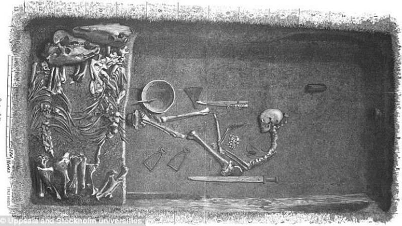Eeuw na opgraving blijkt Vikingstrijder een vrouw