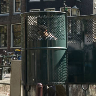 Uitspraak over wildplassende Amsterdamse krijgt vervolg