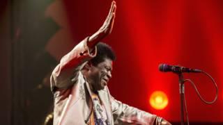 Soulzanger en James Brown-imitator Charles Bradley overleden
