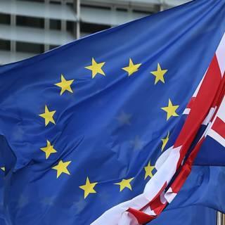 Britse journalist start 'per ongeluk' anti-brexit-partij