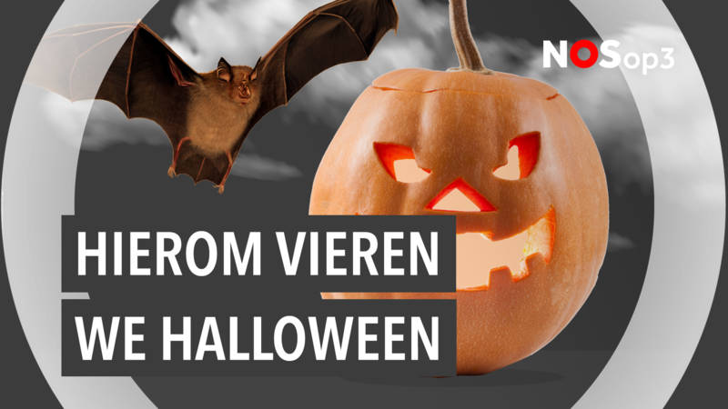 Halloween Filmpjes Nederlands.Waarom Vieren Wij In Nederland Halloween Nos