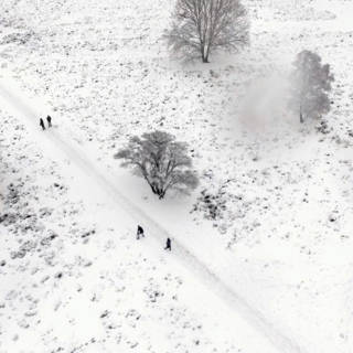 Bekijk details van Vlieg mee over dit sprookjesachtige winterlandschap