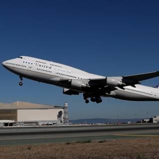 United Airlines weer in de fout met huisdier