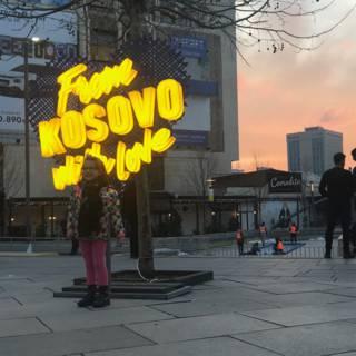 Bekijk details van Blijdschap, verdriet en zorgen over de toekomst op Kosovo's 10e verjaardag 