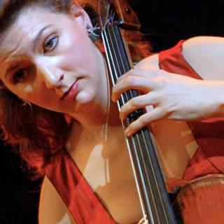 Dader heeft spijt van diefstal eeuwenoude cello
