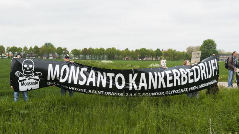 Dutch anti-Monsanto demonstrators in 2013. Photo HH/Michiel Wijnbergh