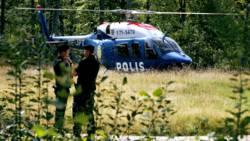 Zweeds gevechtsvliegtuig stort neer na botsing met zwerm vogels.