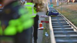 Varkens lopen over A2 bij Eindhoven na dodelijk ongeluk.