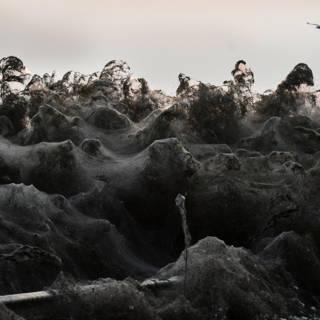 Bekijk details van Spinnenweb van een kilometer bedekt Griekse kustlijn