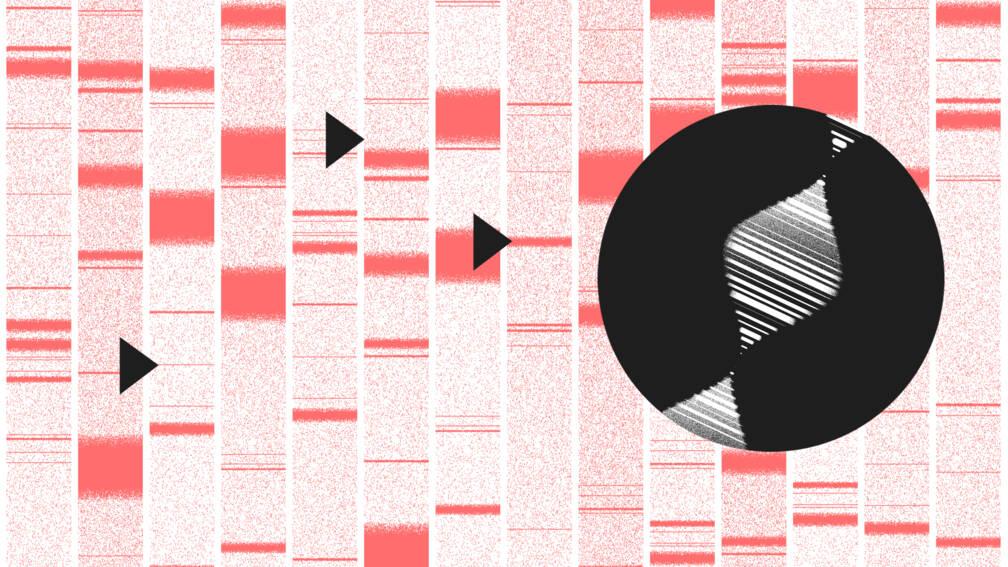 Aanbieders commerciële dna-tests voldoen vaak niet aan privacywetgeving
