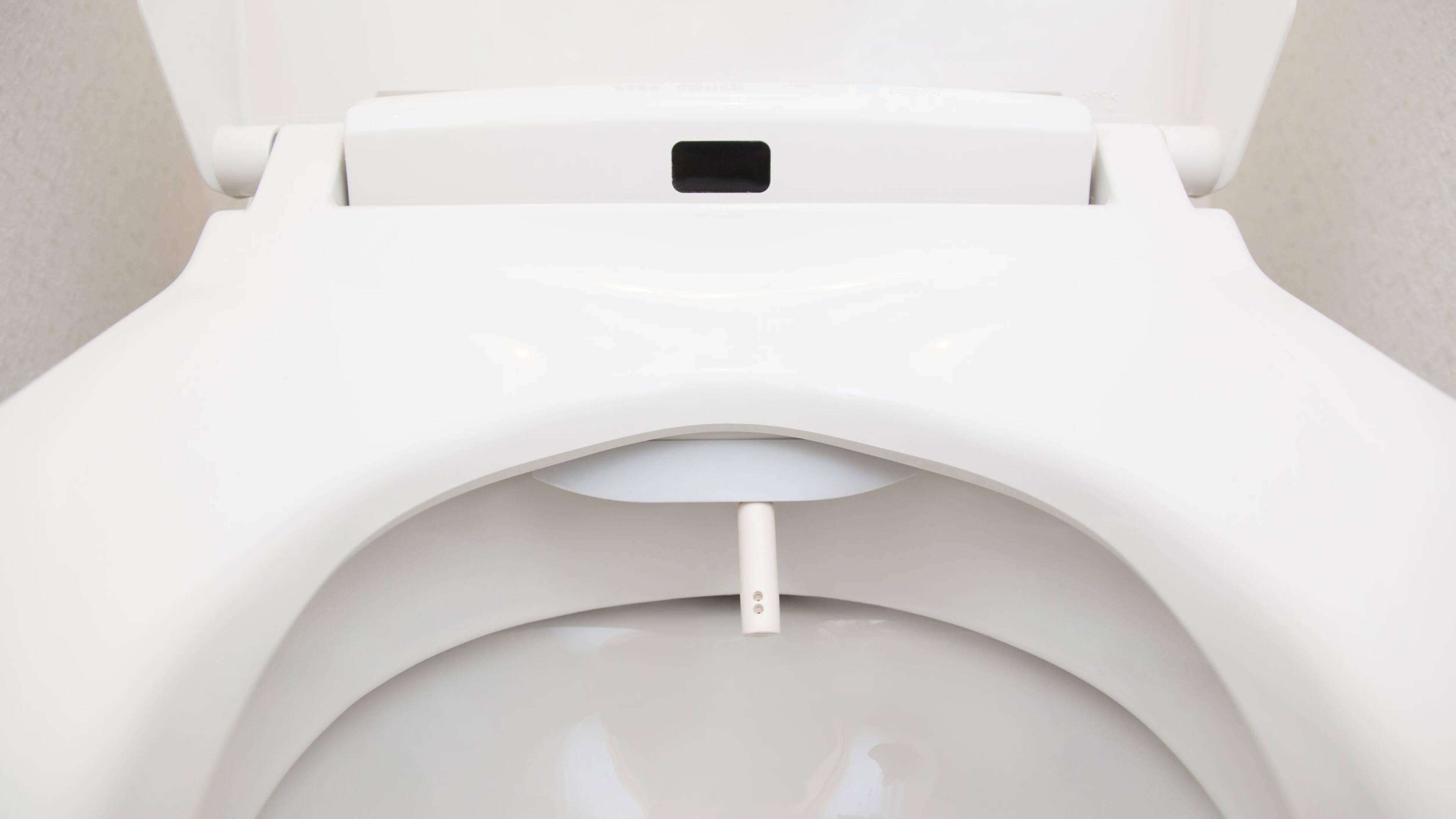 Fantastic Steeds Vaker Billen Afvegen Op Zn Japans Met Water In Pabps2019 Chair Design Images Pabps2019Com