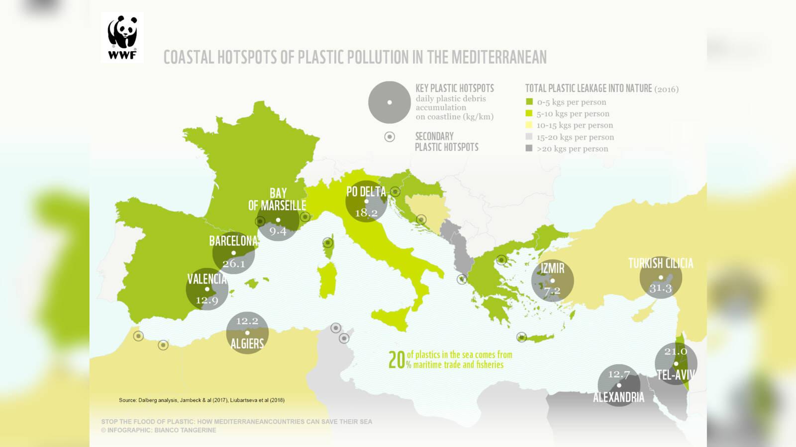 Plastic pollution in the Mediterranean