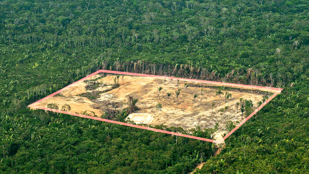 Hoe het Amazonewoud meer en meer onder druk komt te staan