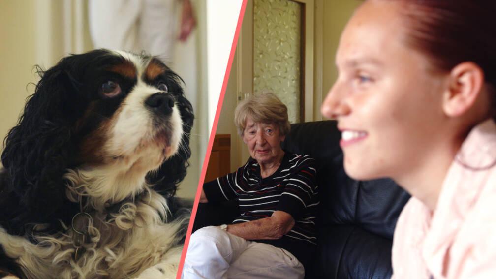Dit is hoe mevrouw Harthoorn (82) haar hondje Bowie kan houden