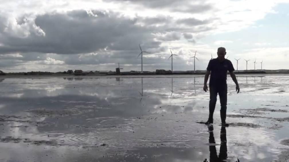 Bekijk details van Verbazing over ondergelopen bollenvelden in kop van Noord-Holland