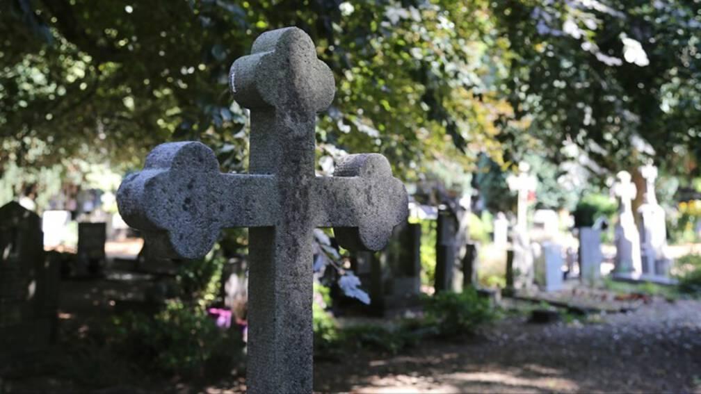 Bekijk details van Jonge Eindhovenaar aangehouden na leegroven graven