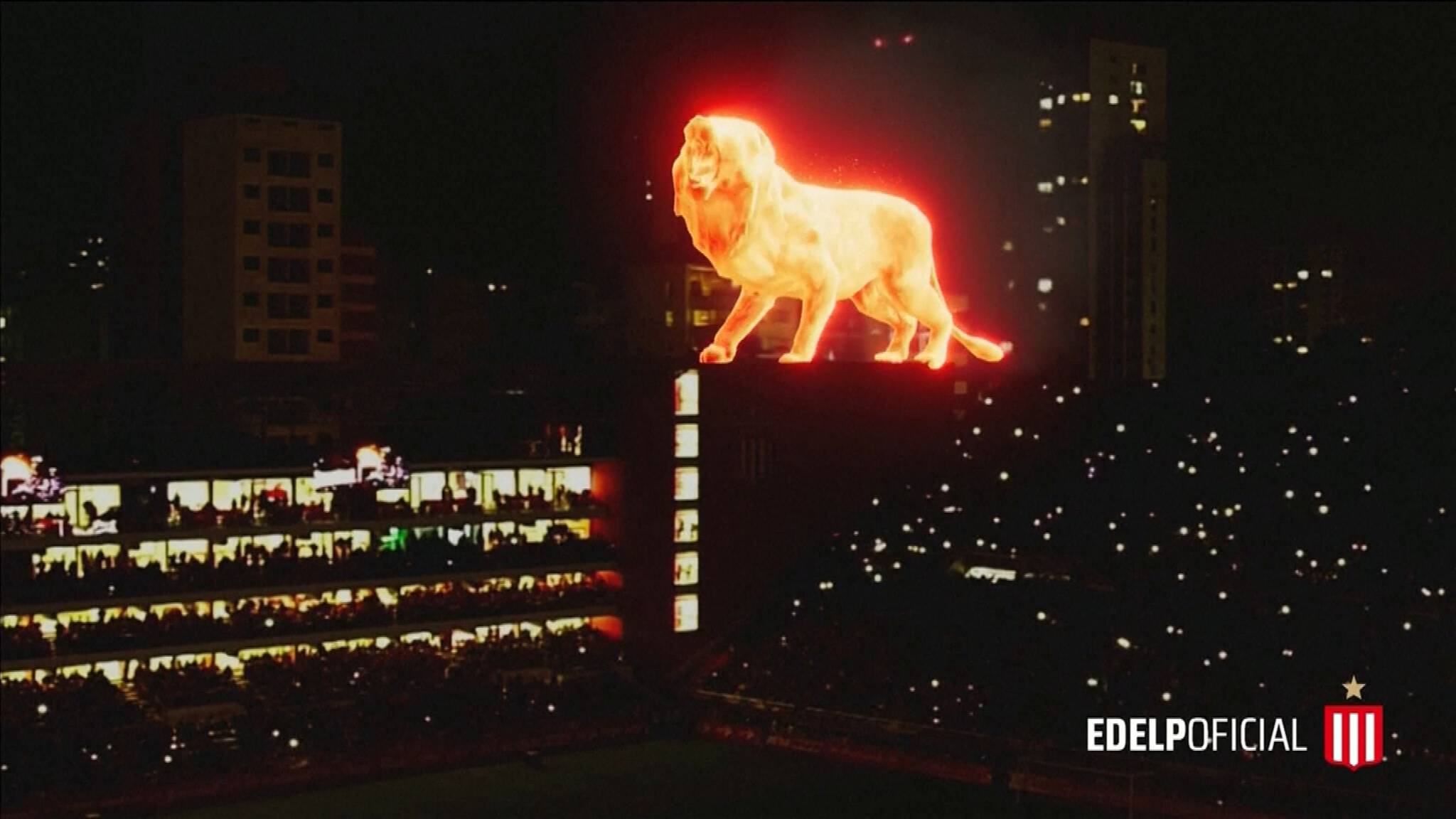 Leeuw zorgt voor fraai schouwspel bij heropening stadion Estudiantes - NOS