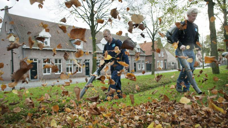 Duits ministerie over bladblazers: ze zijn te vies, en dodelijk voor insecten