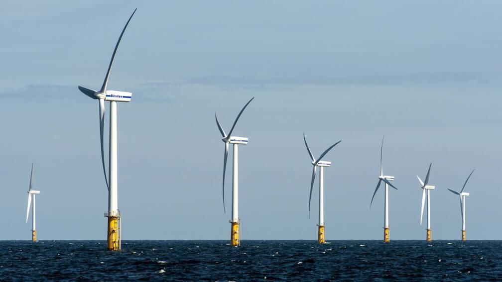Bekijk details van Plannen voor het grootste Europese waterstofproject in Groningen