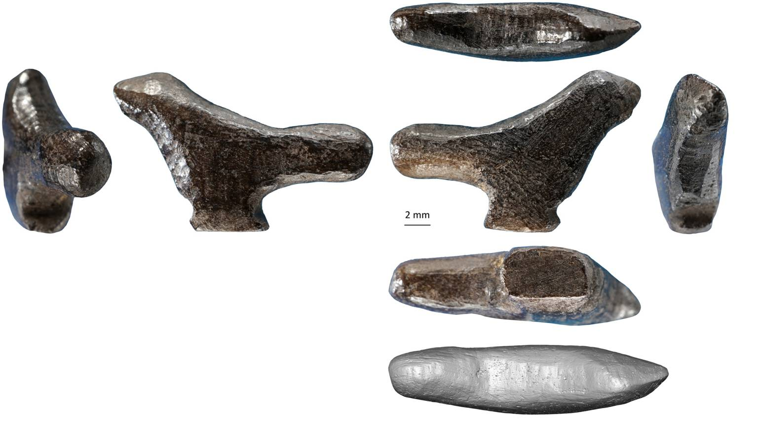 The newly discovered bird sculpture, photo  Li et al | Plos One
