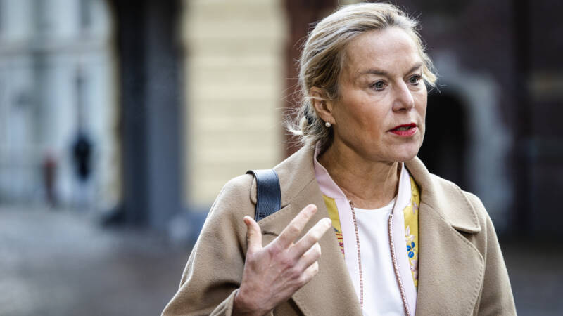 'D66 wil 10 miljard steken in onderwijs en kinderopvang' - NOS