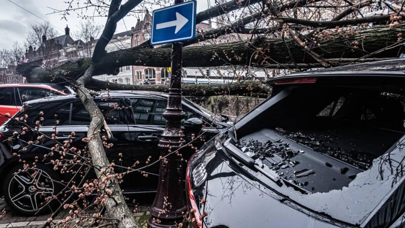 Zeker dertig miljoen euro schade door storm van gisteren - NOS