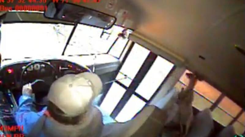 Hert wil de bus nemen, maar dat gaat fout