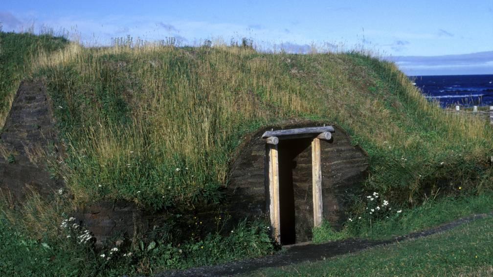 Bekijk details van Precies 1000 jaar geleden: 'Vikingen waren in 1021 in Noord-Amerika'